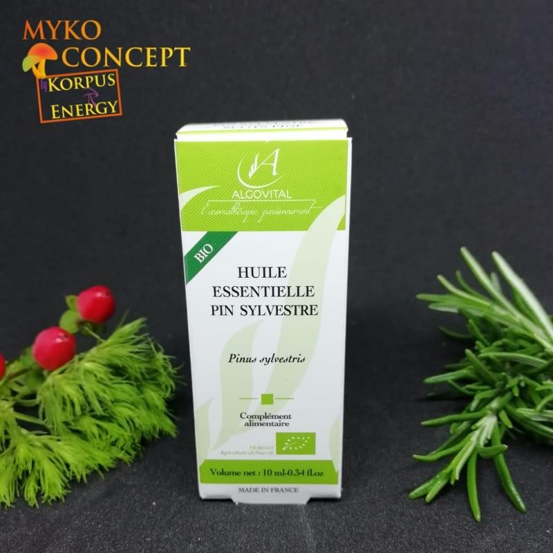 Pino silvestre - MykoConcept Svizzera