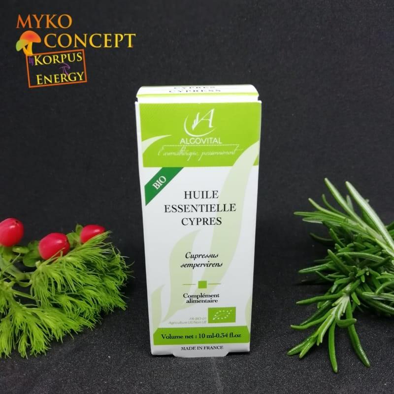 Cipresso - MykoConcept Svizzera