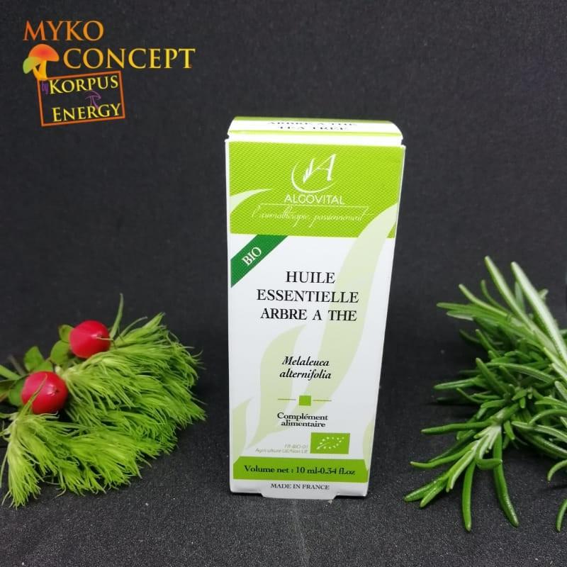 Albero del tè - MykoConcept Svizzera
