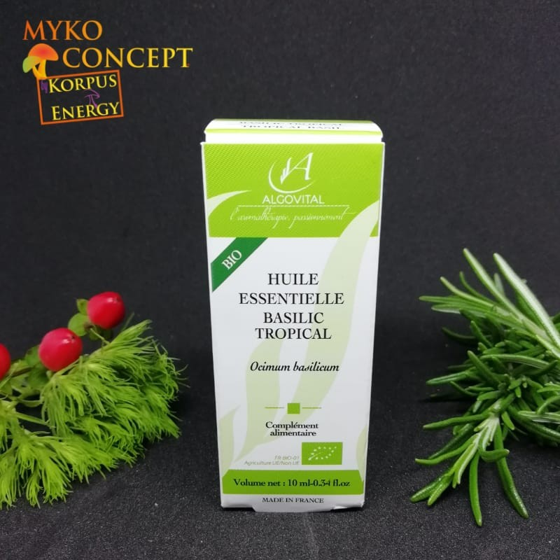 Basilico tropicale - MykoConcept Svizzera