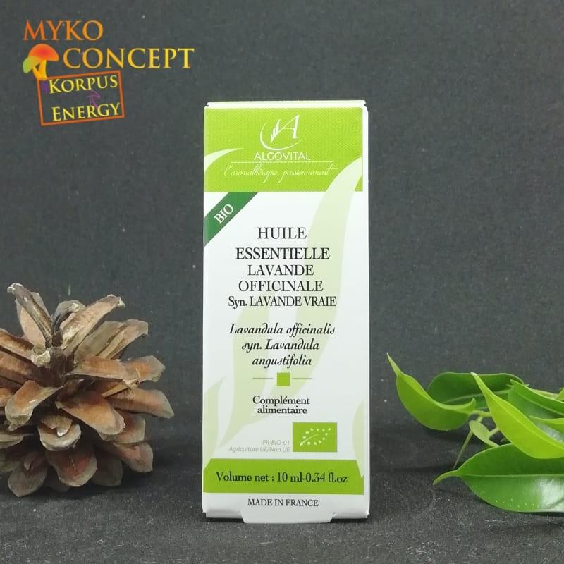 Lavender Officinale - MykoConcept Schweiz