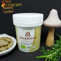 Agaricus - 60 capsules