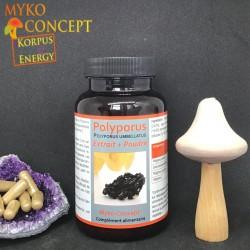 Polyporus - 120 Kapseln