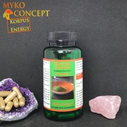 Moringa Oleifera - Myko-concept