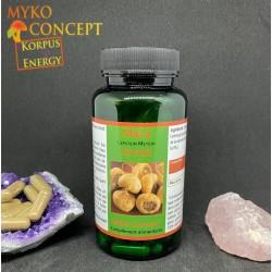 Maca Myko-concept