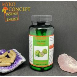 Graviola Myko-conept
