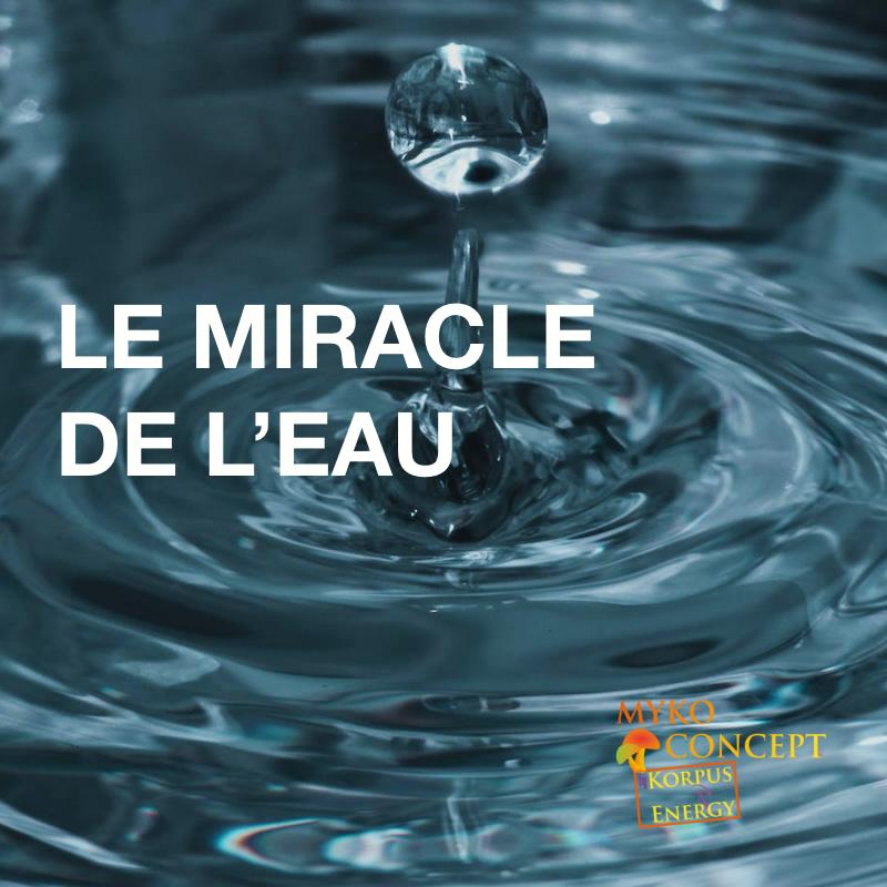 LE MIRACLE DE L'EAU - L'eau message de notre A.D.N, l'importance de l'eau au quotidien