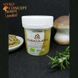 Auricularia - MykoConcept Schweiz